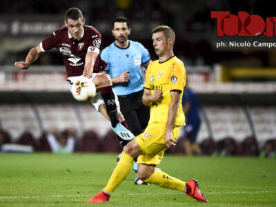 Torino-Soligorsk, Stefanski di manica larga