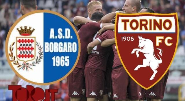 Borgaro-Torino 1-9